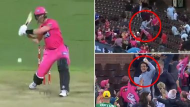 Fan Takes Spectacular Catch During Sydney Sixers vs Melbourne Stars Big Bash League 2019–20 Final, Netizens Term It One of the Best Crowd Catches Ever (Watch Video)