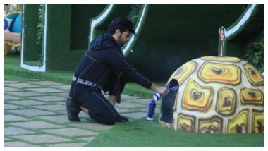 Bigg Boss 13 Day 129 Highlights: Paras Chhabra Ruins Task For Shehnaaz Gill and Arti Singh
