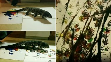 Australia Bushfire Donations: Lizard Raises Money for Wildfire Victims by Painting, See Pics and Videos