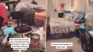 Best Roommate Ever? Viral TikTok Video of Girl Cleaning Friend's Room Divides the Internet