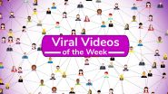 Viral Videos of the Week: From 'JCB Ka Jugaad' to Teen Slapping Mom's Breasts for TikTok Stunt, 7 Clips That Internet Couldn't Stop Watching