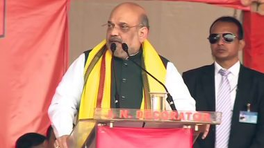 Amit Shah Hails Bihar as Fighter for 'Democratic Rights' in India While Addressing Bihar Jansamvad Rally Through Video Conferencing