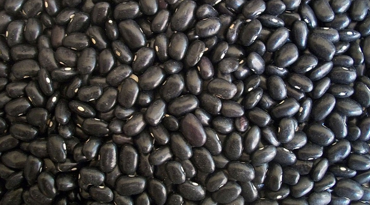 Weight Loss Tip of the Week: How to Eat Black Beans to Lose Weight
