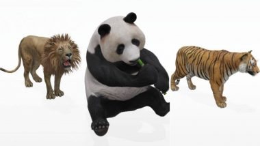Google 'View in 3D' Animals AR Feature Video Tutorial: Step by Step Guide on How to Click Photos With Lion, Giant Panda, Tiger, and Penguin in Your Space