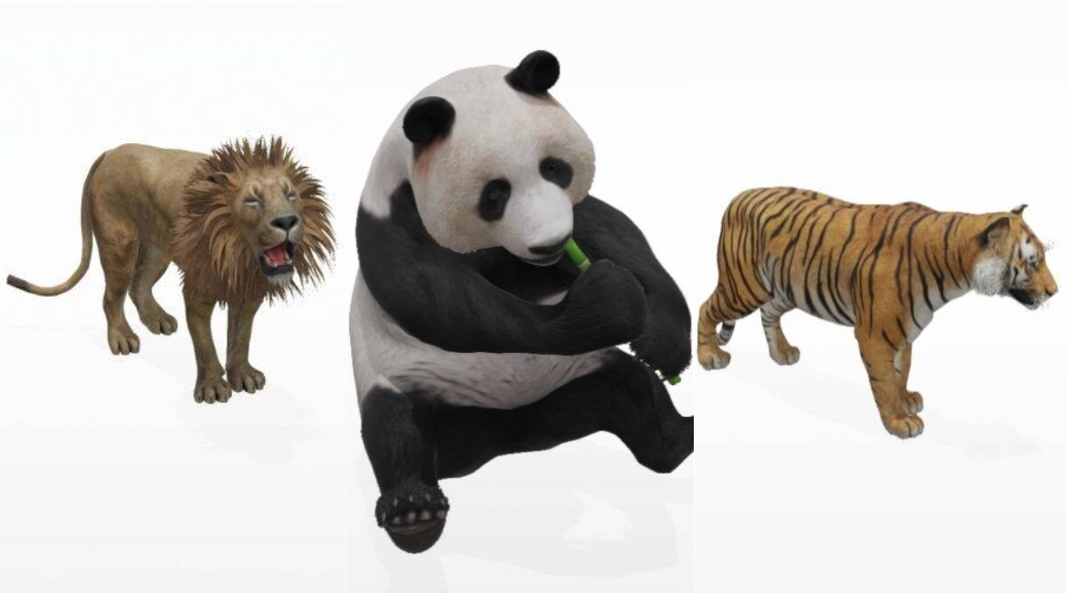 Google 3D Animals Video Tutorial: How to View Tiger, Giant Panda ...