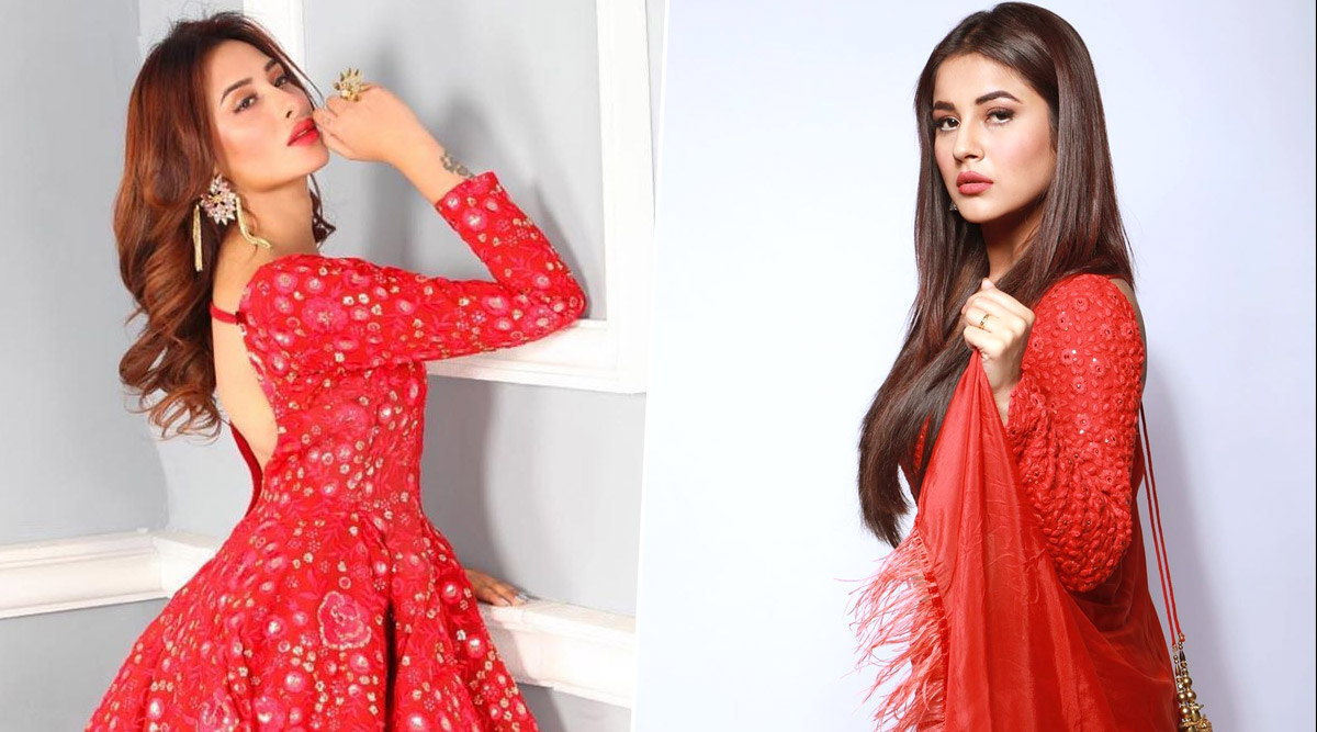 Bigg Boss 13: Is Mahira Sharma 'Jealous' of Her Co-Contestant Shehnaaz Gill? (Watch Video)