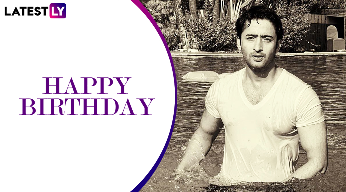 Shaheer Sheikh Birthday Special: From Arjun in Mahabharat to Dev in Kuch Rang Pyaar Ke Aise Bhi, 5 Roles That The Hunk Portrayed To Perfection