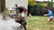 After Kane Williamson's Sandy, Shreyas Iyer's Pet Dog Betty Also Nails Slip Catching While in Quarantine (Watch Video)