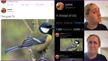A Thread of Tits Going Viral on Twitter is a Treat For Your Eyes, But 'Dirty Minds' Can't Keep Calm; Check Out These Funny Reactions