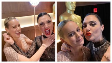Captain Marvel Meets Wonder Woman! Brie Larson and Gal Gadot Share Selfies
