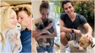 Kaley Cuoco, Cara Delivigne, Antoni Porowski and More Celebs Are Fostering Shelter Dogs During the COVID-19 Pandemic (See Pics)