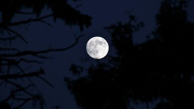 March Full Worm Supermoon 2020 Date and Time: Know How and When to Watch This Amazing Lunar Spectacle