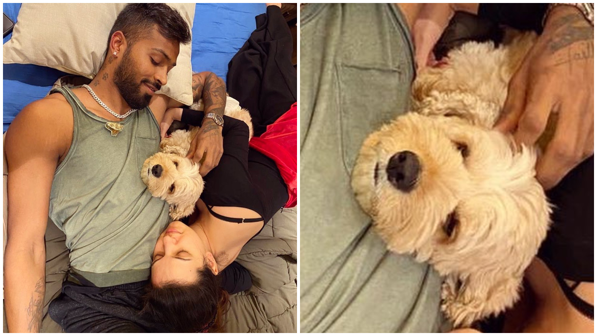 Natasa Stankovic and Hardik Pandya's Quarantine Pic Is Cute, but Their Dog Is Stealing the Show