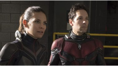 Evangeline Lilly's Comments on Coronavirus Pandemic May Cost her the Co-Lead Role in Ant-Man 3