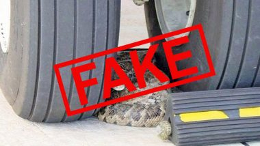 Is the Pic of Python Resting Between the Front Wheel of an Aircraft From Indira Gandhi International Airport amid the Lockdown? Fact Check Behind the Viral Tweet