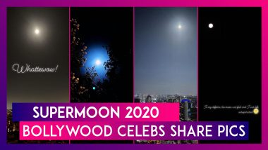 Pink Supermoon 2020: Vicky Kaushal, Ananya Panday, Parineeti Chopra & Other Celebs Share Pictures