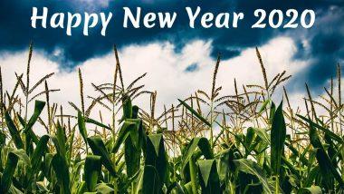 Puthandu Vazthukal, Subho Pohela Boishakh, Vishu Ashamsakal, Bohag Bihu and Jur Sital! India Celebrates New Year With Wishes, HD Images, Greetings, Quotes, Messages, & GIFs