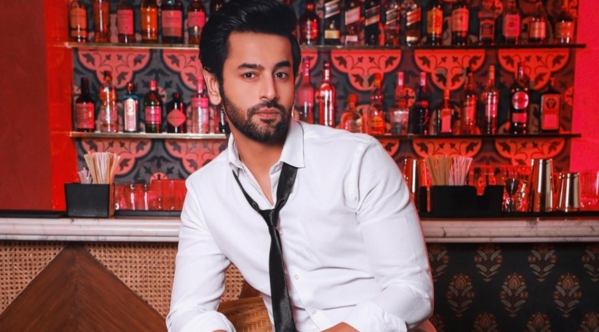 Balika Vadhu Star Shashank Vyas Says He Never Takes Social Media Seriously, Here's Why