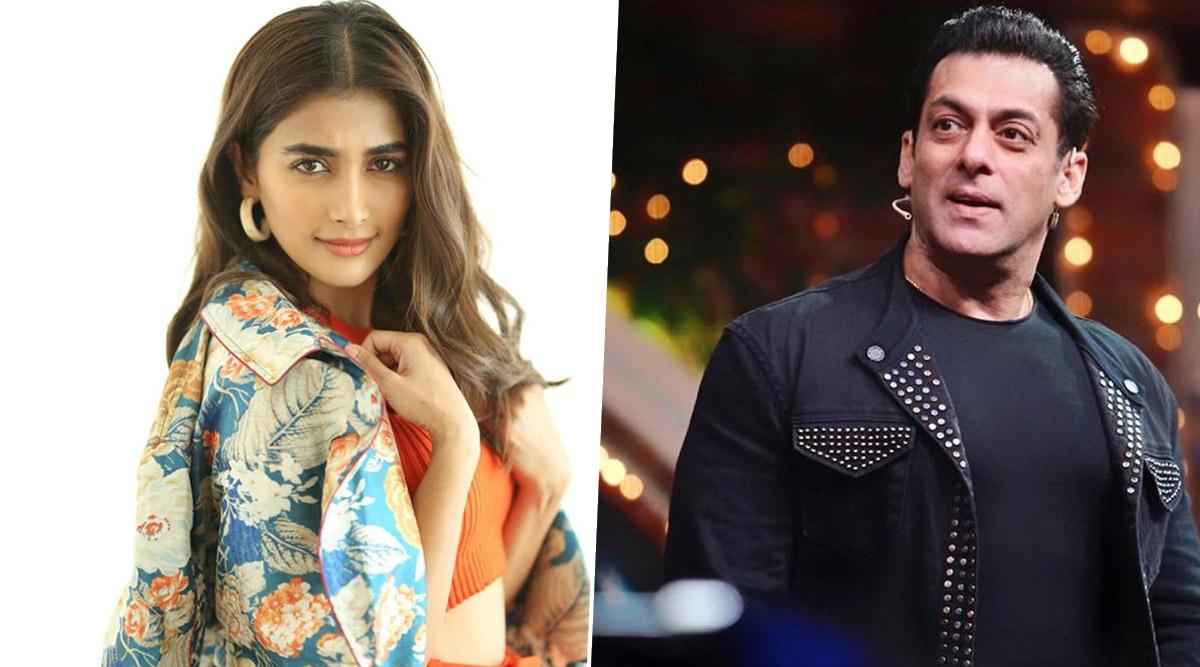 Pooja Hegde 'Nervous' to Work With Salman Khan in Kabhi Eid Kabhi Diwali, Says 'Working With Stars May Be Intimidating'