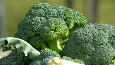 Broccoli, Brussels and Sprouts Delight Can Prevent Advanced Blood Vessel Disease, Shows Study