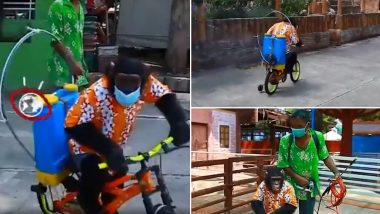 DISTURBING! Chimpanzee Forced to Wear Face Mask, Ride Bicycle and Spray Coronavirus Disinfectant at Thailand Zoo, Animal-Cruelty Video Goes Viral