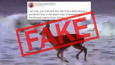Fact Check: Deer Spotted Playing on Chandrabhaga Beach or Konark Puri Marine Drive in Odisha Amid Lockdown? Know Truth About This Viral Video