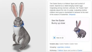 Easter Bunny View in Google 3D Animals Is Everything! Go Try It Out Now if You Missed Catching One During Festival