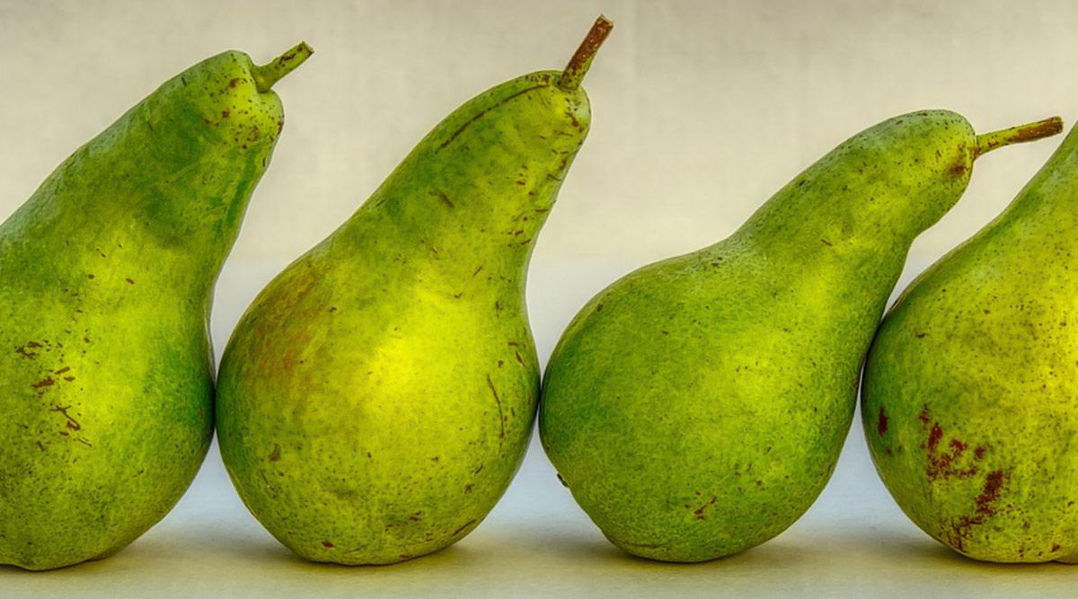 Astuce de perte de poids de la semaine: Comment manger des poires (Nashpati) pour perdre du poids