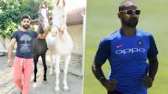 'Dono Ride Karengey After Coronavirus': Shikhar Dhawan Asks Ravindra Jadeja to Go on a Horse Ride With Him After COVID-19 Crisis Is Over