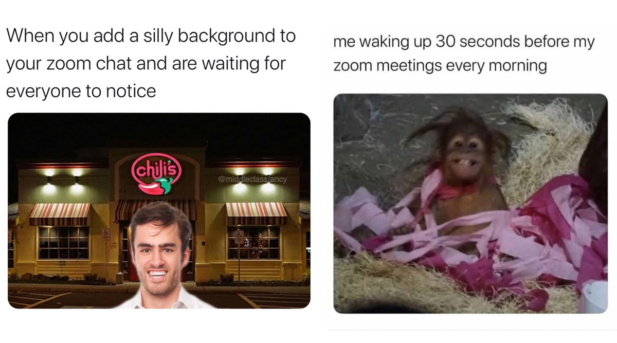 Zoom Meetings Funny Memes These Hilarious Jokes Perfectly Sum Up
