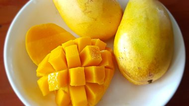 Mango Museum To Come Up at Central Institute for Subtropical Horticulture Office in Lucknow