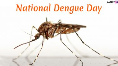 National Dengue Day 2020 Date & Significance: Know More About the Day Dedicated to Spreading Awareness About the Mosquito-Borne Infection