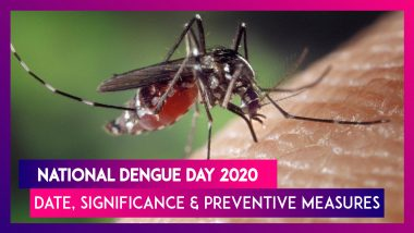 National Dengue Day 2020: Date, Significance & Preventions Against This Mosquito-Borne Disease