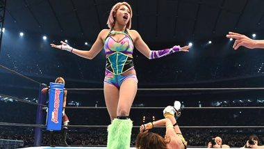 Hana Kimura No More: Professional Japenese Wrestler and Netflix's Terrace House Cast Member Dies at 22