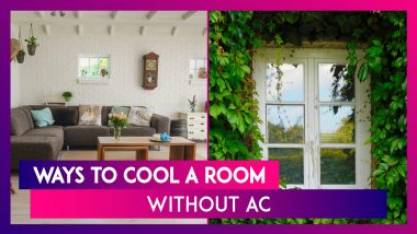 Heatwave Alert: 5 Natural Ways To Keep Your House Cool In Summer Without Using Air Conditioners