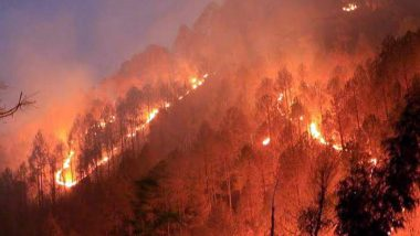 Uttarakhand Forest Fires Continue to Rage for 4th Consecutive Day, Kumaon Region Worst-Hit: Here Are 5 Latest Updates