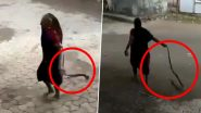 Badass Dadi! Grandma Casually Drags a Cobra and Hurls it Away (Snake Video Goes Viral)