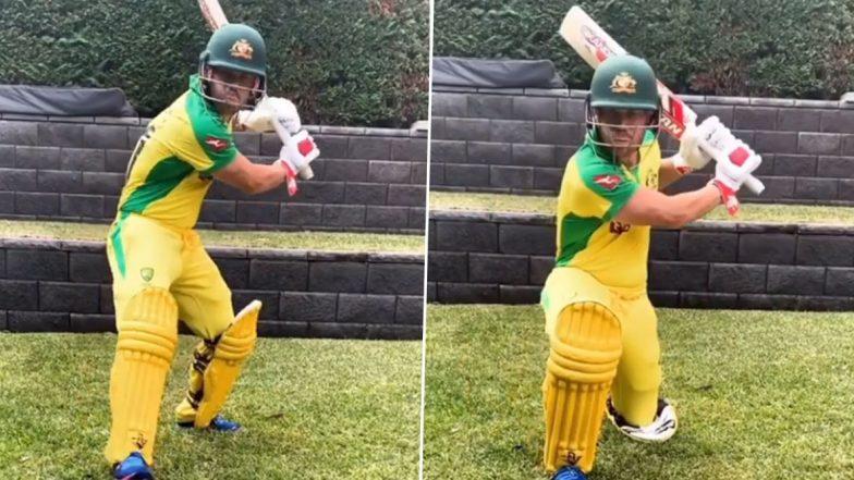 David Warner Raring to Get Back Onto the Cricket Field, Says 'Sick of Shadow Batting in the Backyard' (Watch TikTok Video)