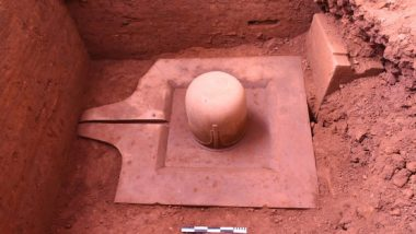 Monolithic Sandstone Shiv Linga of 9th C CE Unearthed by ASI in Vietnam Temple, Informs EAM S Jaishankar (See Pics)