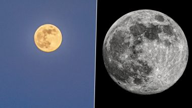 Super Flower Moon 2020 Photos: Netizens Share Stunning Pics of The Last Supermoon of This Year