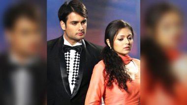 Vivian Dsena On Madhubala - Ek Ishq Ek Junoon Completing 8 Years: 'Madhubala Was The Highlight of My Career'