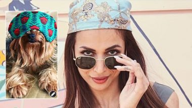 Malaika Arora's Twinning Partner Is Giving Her A Tough Competition In This Headgear Affair (View Post)