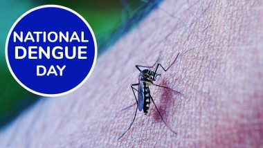 National Dengue Day 2020: From Getting Rid of Stagnant Water to Using Repellent Creams, Precautionary Measures to Keep Mosquitoes at Bay