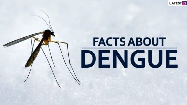 National Dengue Day 2020: Facts About the Viral Disease Caused by Mosquitoes You Need to be Aware of