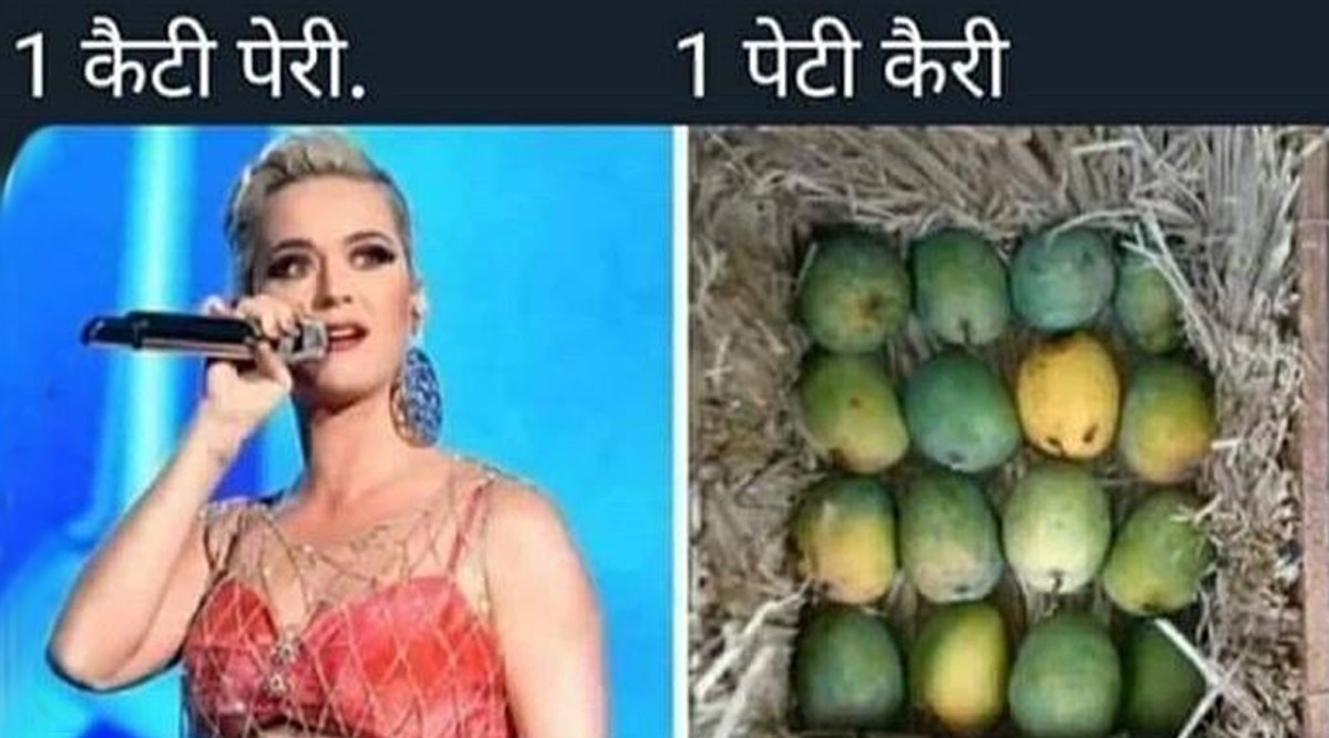Riteish Deshmukh Shares a Funny Meme On Katy Perry and We Bet Desi Fans Will Relate To It!