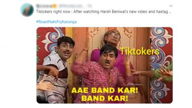 #RoastNahiFryKarunga Funny Memes and Jokes Continue After Harsh Beniwal Posts 'A Day With Cringe TikToker' YouTube Video