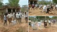 Andhra Pradesh: Scuffle Breaks Out Between Rival Factions of YSRCP in Payalakuntla Village of Kadapa District, Watch Video