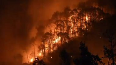 Forest Fire in Uttarakhand Leaves 71 Hectares of Land Destroyed; PIB Says Wildfire Incidents Dropped This Year, Shares Graph