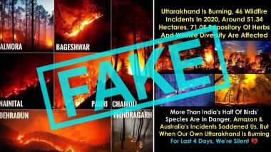Uttarakhand Forest Fire Fake Photos Spread Online Rapidly, Officials Request Not to Panic