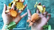 Video of Colourful Leaf Insects Go Viral! 6 Quick Facts to Know About Phylliidae or Walking Leaves